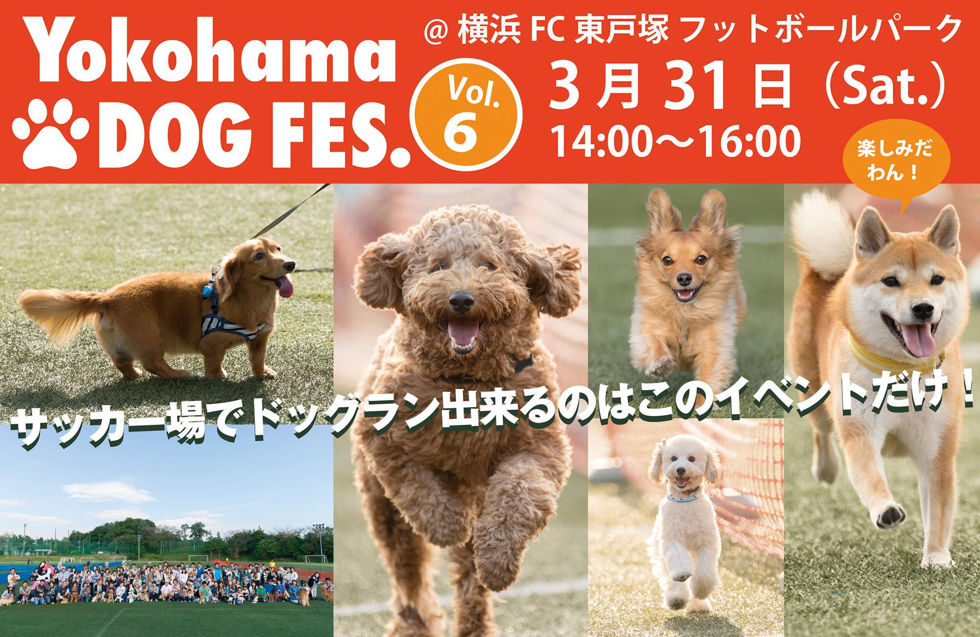 Yokohama DOG FES. Vol.6